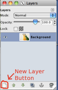 Points to the New Layer Button in the Layers dialog box